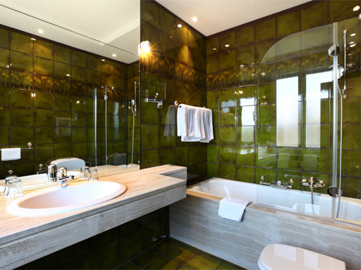 Superbe Bathroom Remodeling Features